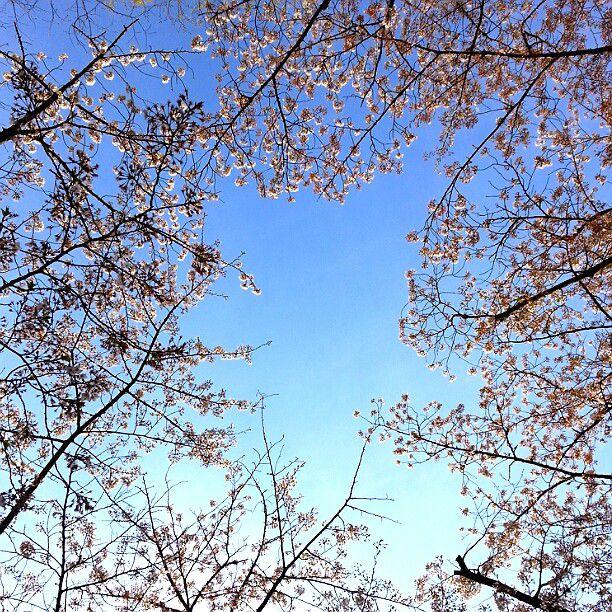 初台・新宿で遊ぶならここに決まり!おすすめの観光名所15選