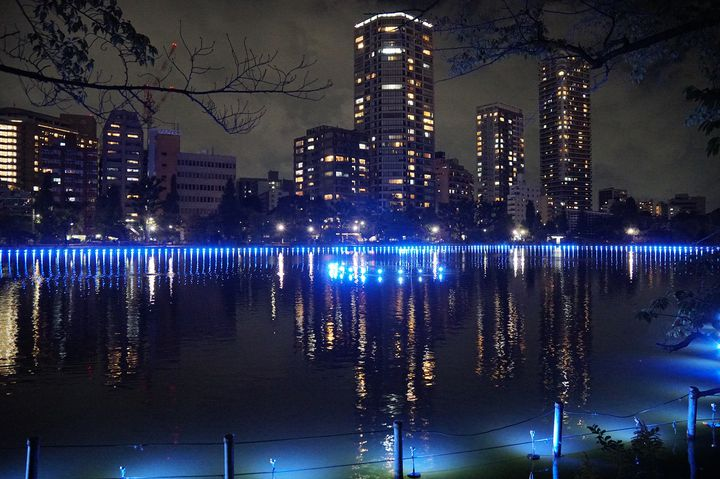 【終了】第1弾はクリスマスに開催!夜のアートイベント・シリーズ「上野夜公園」開催