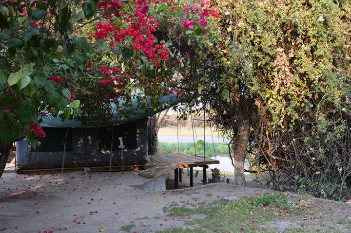 ボツワナ 世界遺産オカバンゴの町、マウンのバックパッカー向け安宿まとめ