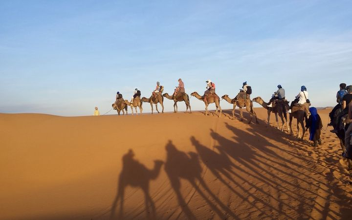 ラクダに乗ってサハラ砂漠で満天の星空を見に行こう!