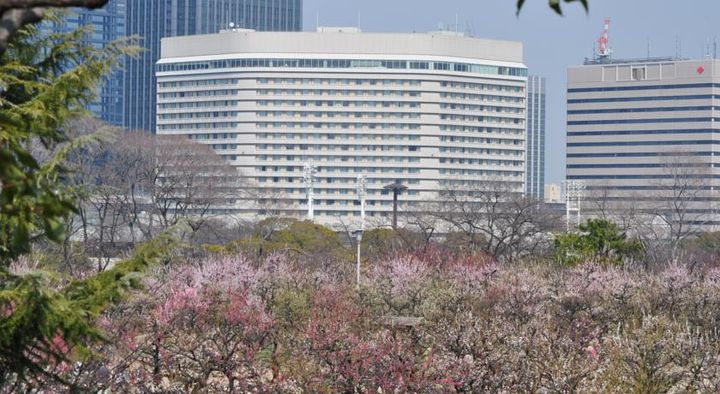 ワンランク上のプランがある!京橋周辺にあるおすすめホテル5選