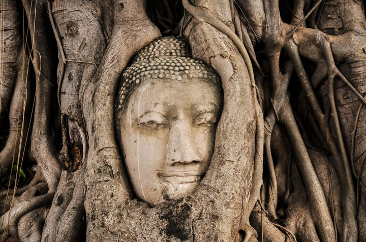 """木の根に絡められた神秘的な仏頭!タイにある""""ワット・マハタート""""って?"""