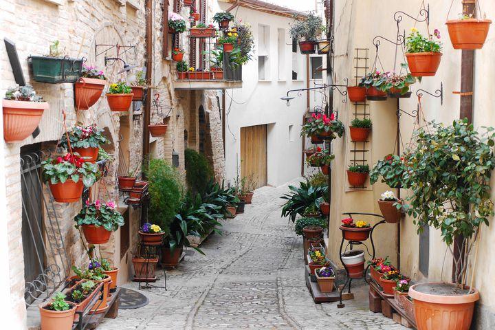 """花びらの絨毯に包まれて。イタリアで最も美しい村""""スペッロ""""の魅力とは"""