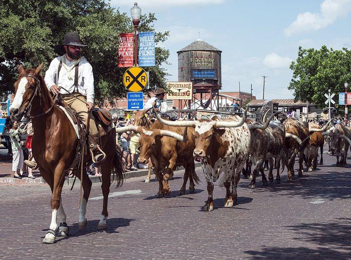 フォートワースの、本物のカウボーイに出会える旅!テキサスカウボーイ記念館の魅力とは?