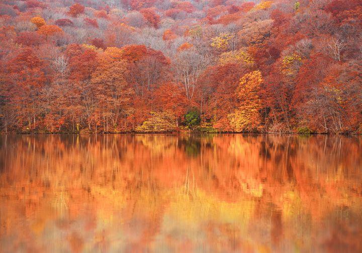 """身も心もどっぷりと秋に浸れる。""""10月に見頃を迎える""""紅葉スポット13選"""
