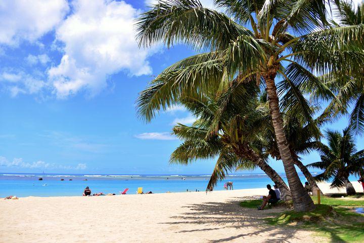 """ビーチで食べるのがおすすめ!ハワイで食べたい""""ランチプレート""""8選"""