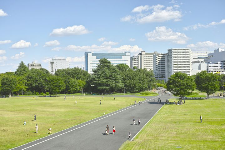 広い敷地を誇る国営昭和記念公園のある市!立川市に宿泊するならこのおすすめホテル5選にしよう!