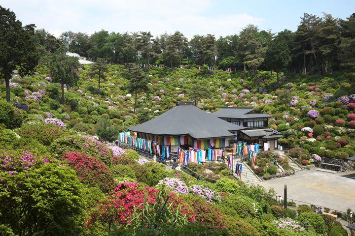 岩蔵温泉郷のある東京都青梅市周辺に宿泊するならここ!おすすめホテル5選!