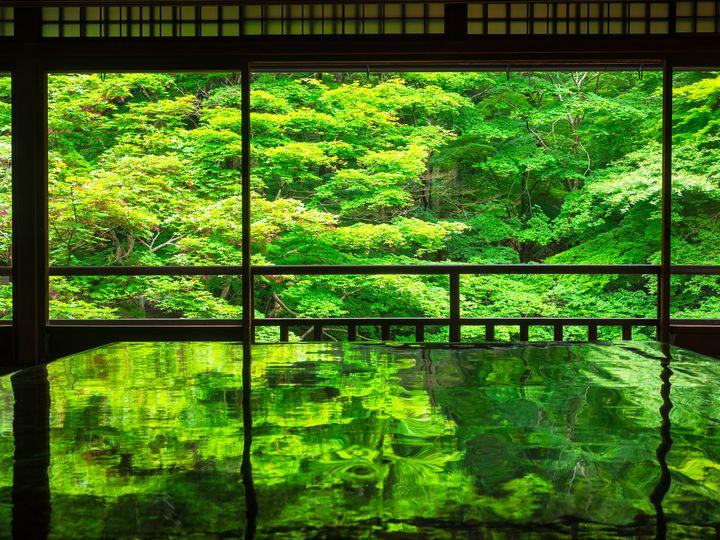 緑が織りなす幻想的な世界。2ヶ月間だけの幻「瑠璃光院」の青紅葉が美しすぎる