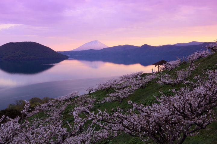 5月だからこその絶景!これから見たい「北海道」でおすすめの7スポット