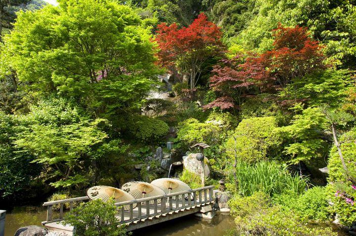 広大な日本庭園も素晴らしいですよ。
