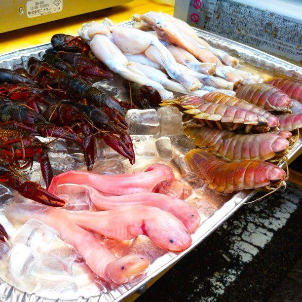 """一度は挑戦してみたい!""""珍獣料理""""が食べられる東京都内近郊のお店7選"""