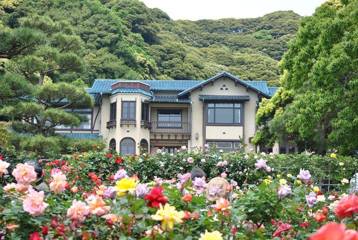 【終了】春の鎌倉に行くならここ!「鎌倉文学館 バラまつり2017」開催