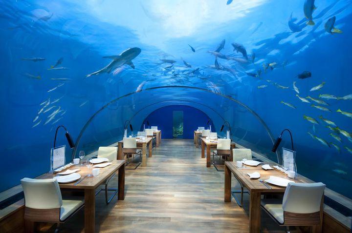 人生を変える絶景が待ってる!一度は行きたい世界の「水中ホテル」10選