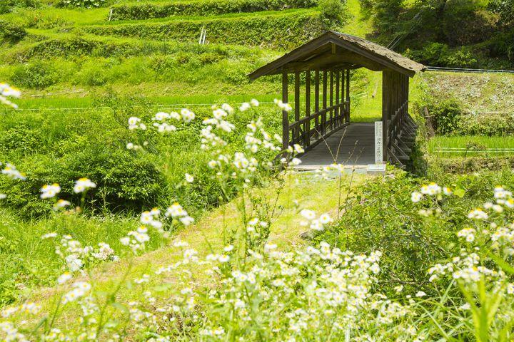 古い町並みと美しい自然が魅力!愛媛県・内子のホテルおすすめ5選