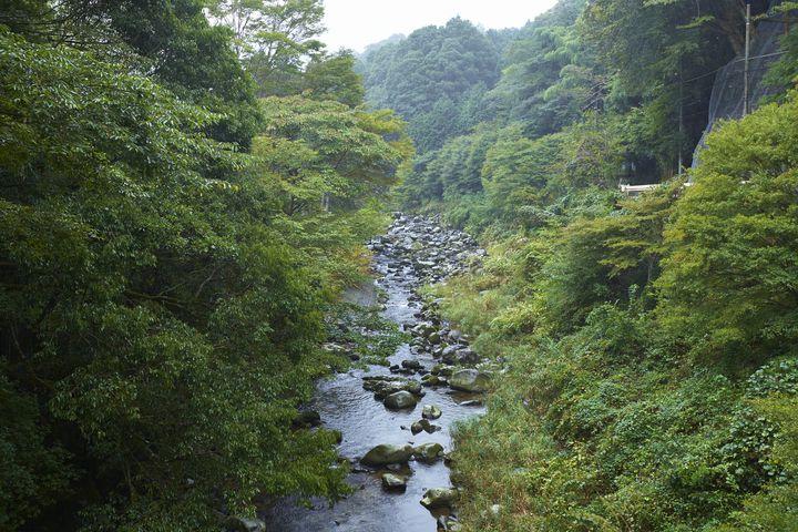 多くの観光スポットがある温泉街!伊豆市土肥でおすすめのホテル20選
