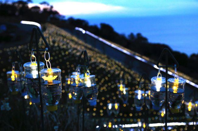 【終了】LEDイルミネーションはいかが?福井県「水仙岬のかがやき2017」開催