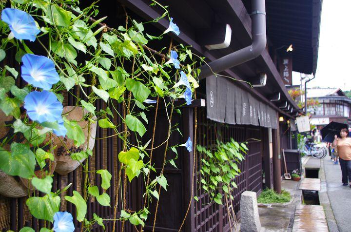 古きよき日本を感じよう!飛騨高山のおすすめ観光スポット10