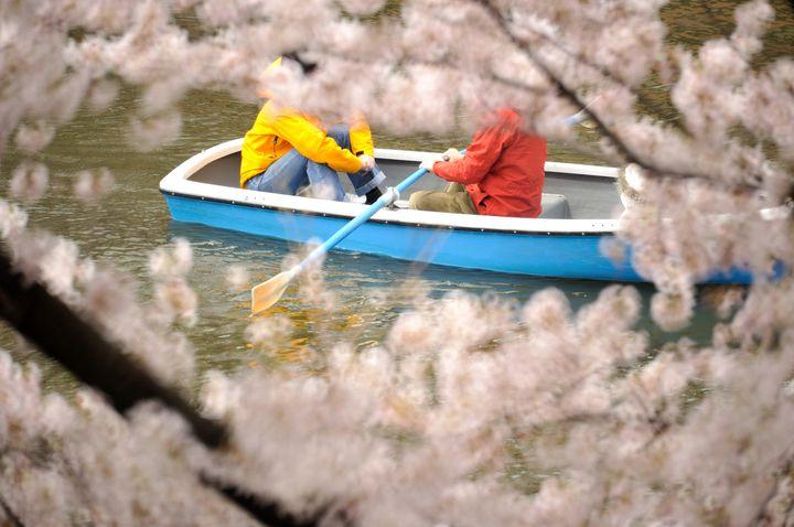 春はお出かけの季節!暖かくなった春の「デートアイデア」10選