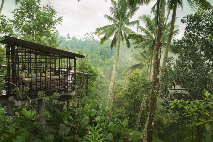 バリ島の森の中で味わう非日常。「星のやバリ」で時間を忘れる贅沢な旅を