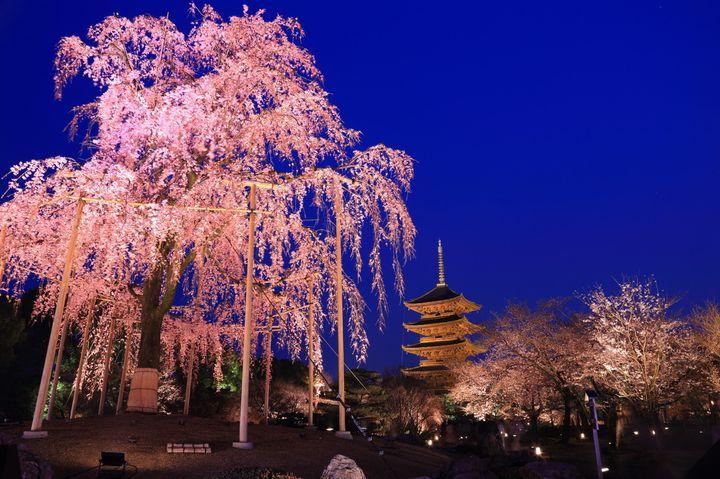 """これからの季節に訪れたい!寺社仏閣を巡る""""関西""""2泊3日プランはこれだ"""