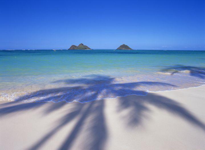セグウェイオブハワイカイルアで美しいハワイのカイルアを楽しもう