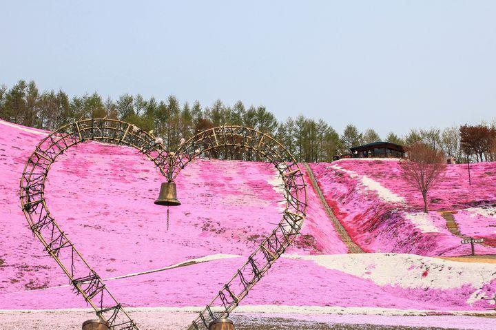 GWにも行ける桃色の絶景!日本で見つけた可愛いピンクのスポット9選