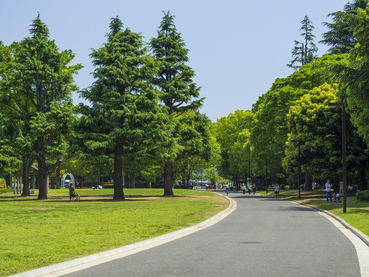 代々木公園を遊びつくせ!東京のど真ん中「代々木公園」完全ガイド