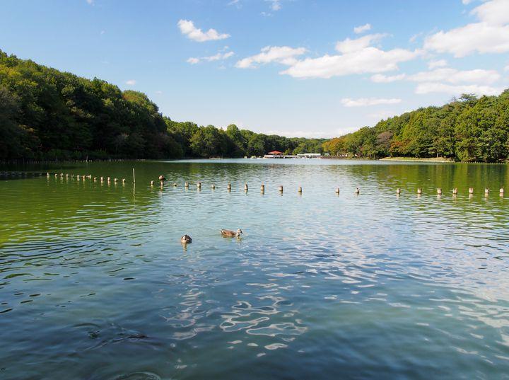 大人も楽しめる!1日中遊べる栃木県のお出かけ・デートスポット7選