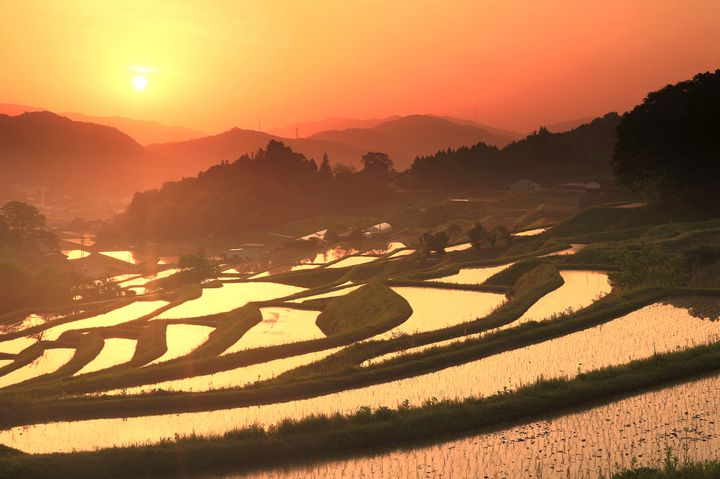 大阪にこんな景色があるなんて!大阪で見つけた美しき10の絶景スポット