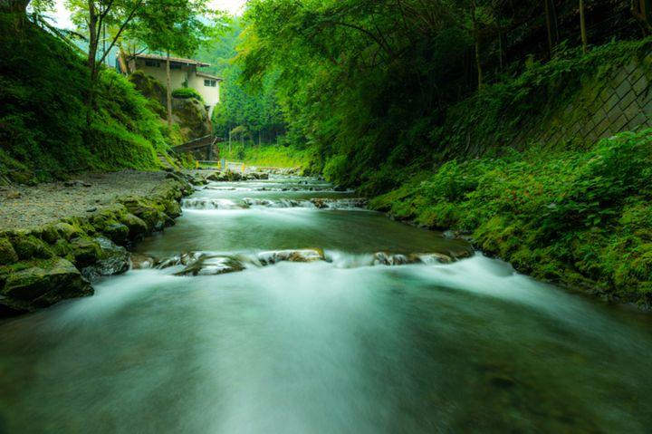 東京最後の秘境へ。自然あふれる奥多摩を楽しむためにしたい7つのこと