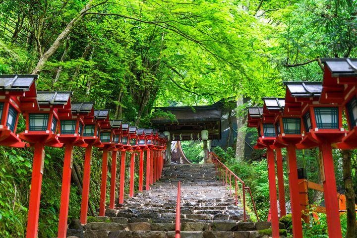 """日本の""""美""""を再発見する旅。日本にある美しい神社10選"""