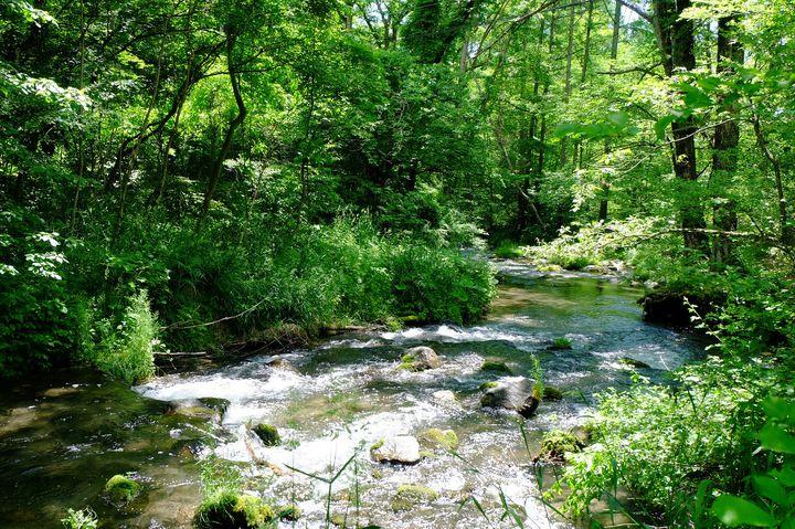 長野の夏は、ワクワクが止まらない!「長野県」のおすすめ絶景&避暑地7選