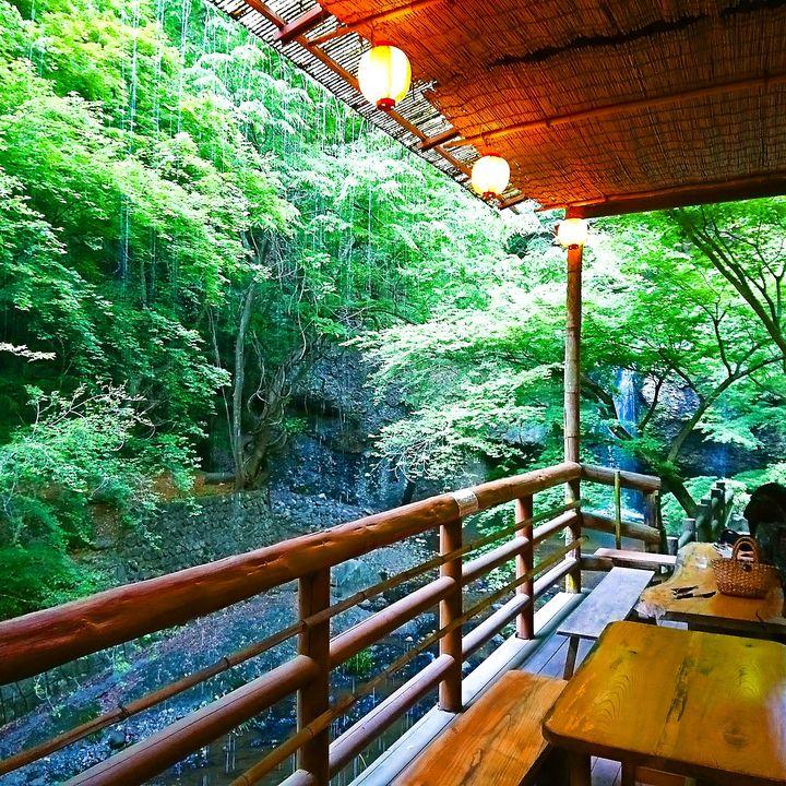 絶景と絶品を同時に味わうそば屋!「月待の滝もみじ苑」の魅力にせまる