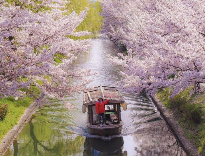 """初夏の京都で川のせせらぎを求めて。京都の""""風情ある川の景色""""8選"""