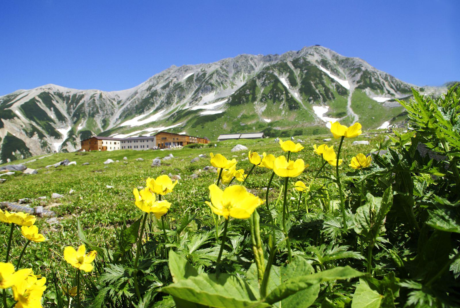 本当の絶景に会いに!この夏こそ「立山黒部アルペンルート」に行くべき7つの理由