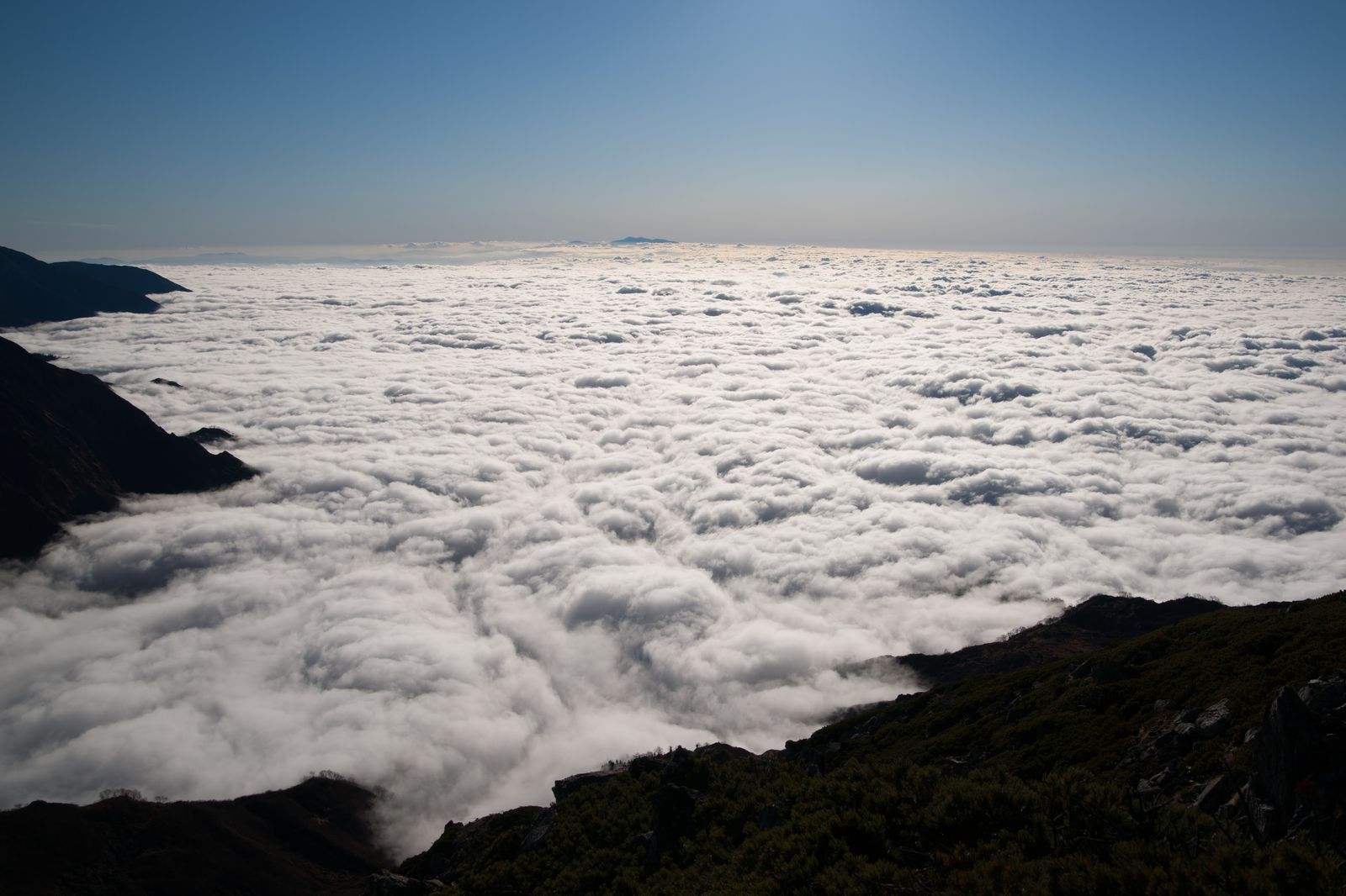 大観峰や室堂、天狗平、弥陀ヶ原といった高所で見られる「雲海」も楽しみの一つ。まるで夢の世界のような光景ですよね。