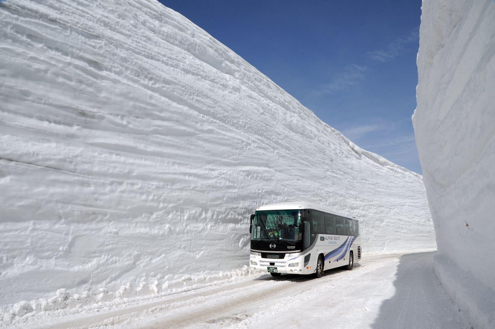皆さんは「立山黒部アルペンルート」は、ご存じでしょうか? 多種多様な乗り物によって標高2000〜3000メートル級の山々を貫き長野県から富山県を結ぶ山岳ルートで、毎年4月から11月の8カ月間だけ通過できる、旅ツウ憧れの旅先の一つです。ときに20メートルにもおよぶという雪の壁が圧巻の「雪の大谷ウォーク」(写真)で、ご存じの方も多いかもしれません。でも、その魅力は積雪の時期だけではなく、雪解け後の夏時期も最高に素敵なんです。