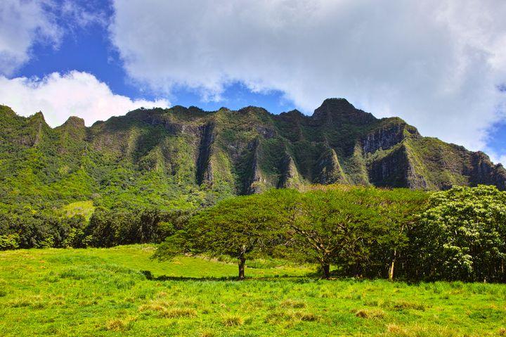 ハワイの大自然を満喫!ハワイ・クアロアランチでしたいことって?