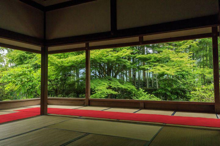 まさにフォトジェニック!緑の絶景に癒される、京都「夏」の名所10選