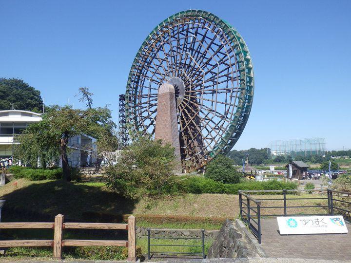 川を知ろう!埼玉「川の博物館」でしたい5つのこと