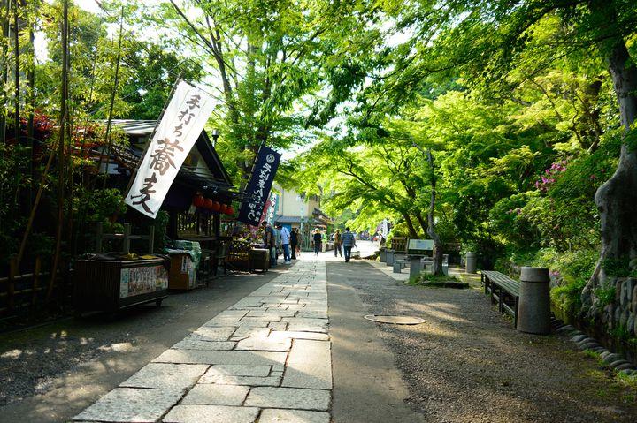 ふらっと日帰りで癒され旅。東京のオアシス「深大寺」でしたい7つのこと