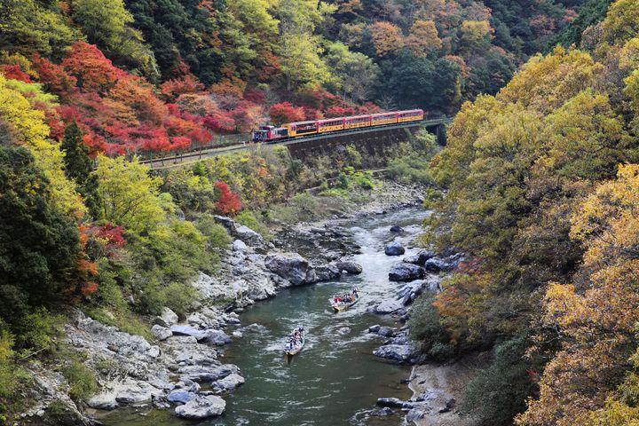 京都 嵐山 嵯峨野観光で人気の「トロッコ列車」の魅力に迫る