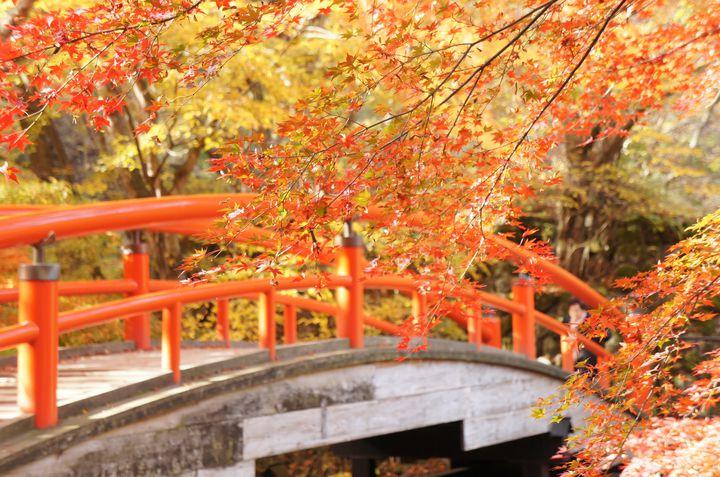 秋に人気の温泉地!伊香保・石段街のおすすめ立ち寄り処7つをご紹介