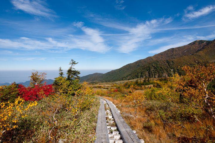 今すぐ行きたい!立山黒部アルペンルートのおすすめスポット~秋の巻~