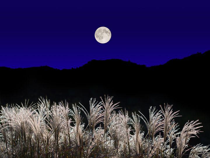 """「月が綺麗ですね」と呟く。この秋行きたい""""お月見イベント""""8選"""