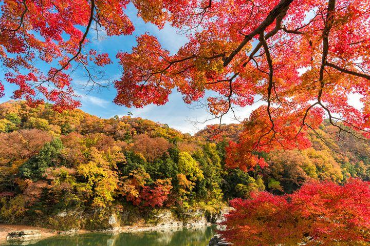 そろそろ秋のお出かけ計画!関東地方の紅葉が美しいおすすめスポットまとめ