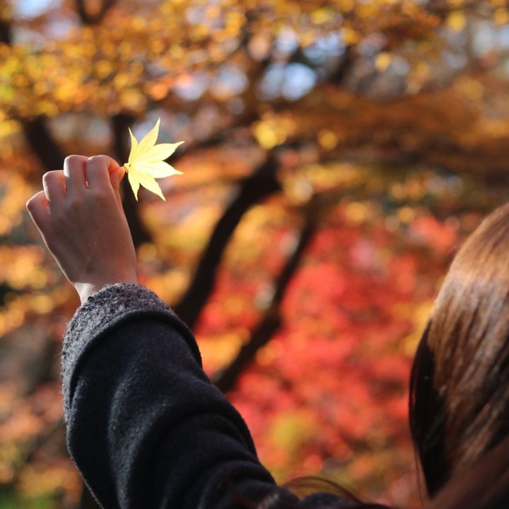 最高の紅葉デートはここにあり。秋の「京都」を満喫する一泊二日プランはこれだ