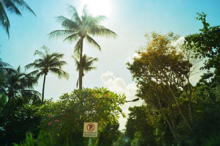 遊びつくさなきゃ勿体ない!シンガポール「セントーサ島」で行きたい10の場所