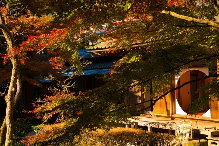 """秋うらら染まるふたりの甘い恋。""""秋""""の鎌倉デートで巡りたい11のスポット"""